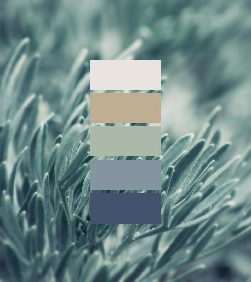 DM-Colour-Palette